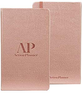 90 Day Action Planner Daily