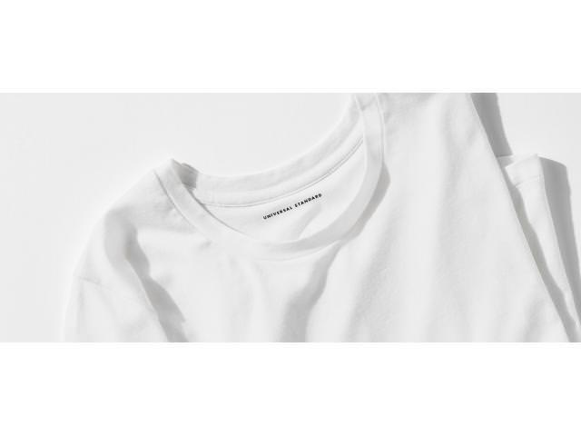 Free  Universal Standard T-Shirt!