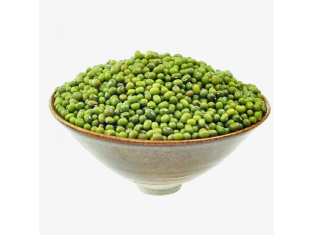 Free Tasty Bite Organic Green Bean Seeds!
