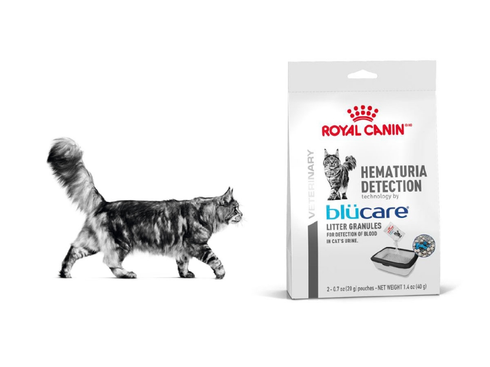 Free Hematuria Detection Sample From Royal Canin